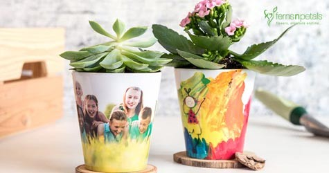 Fernsnpetals Hot Deal : Personalised Pot Plants Starting From Rs. 449