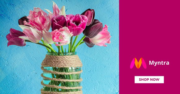 Special Deal : Artificial Flowers And Plants From Rs. 343