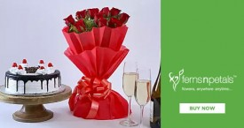 Ferns n petals Fern N Petals Special Deal : Combos Gifts Starting From Rs. 449