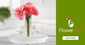 Floweraura Apology Flowers Starting From Rs. 299