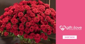 Giftalove Special Deal :  Flower Bunches Starting at Rs. 499