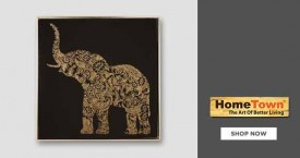 Home town Home Town Offer : Get Upto 45% Discount on Wall Paintings