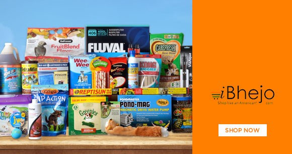 Special Offer : Pet Supplies Upto 40% OFF