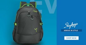 Skybags Best Price : Get Upto 20% OFF on Everyday Bags