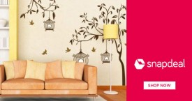 Snapdeal Amazing Deal : Upto 80% OFF on Wall Decor