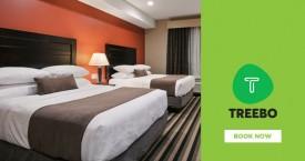 Treebohotels Flat 50% Off  + 10% Cashback on Treebo Hotels